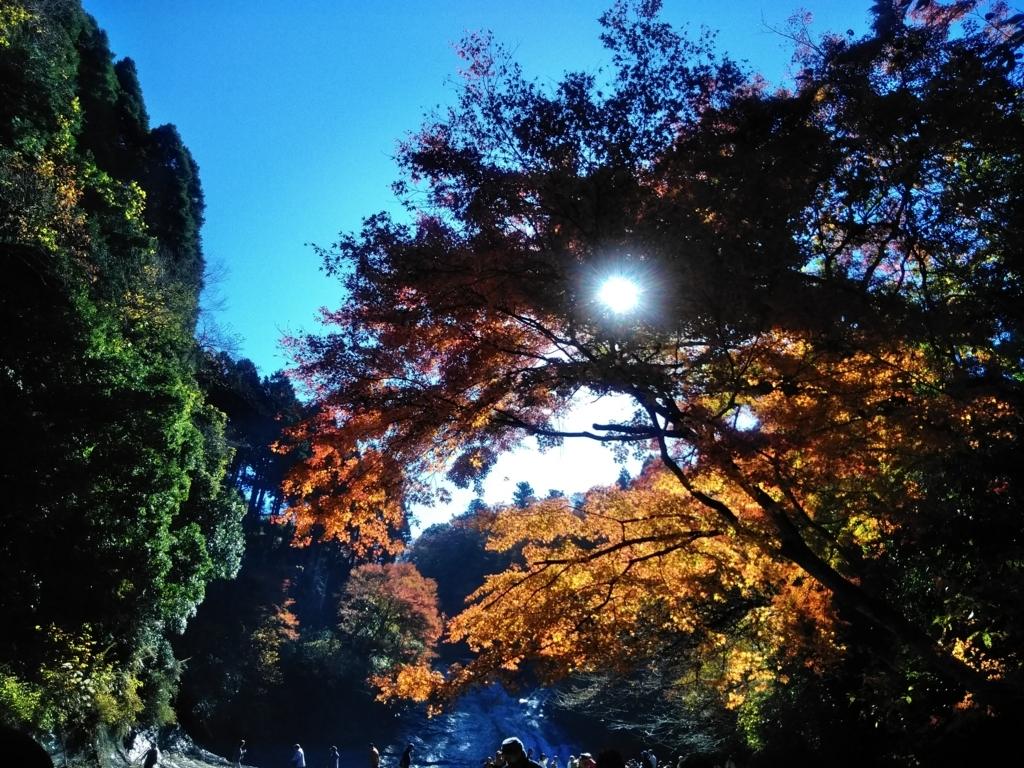 f:id:keiko-blog:20171212125413j:plain