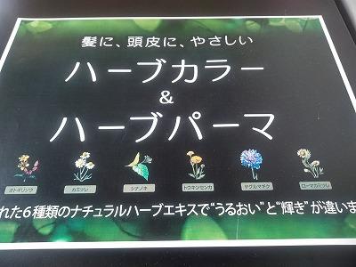 f:id:keiko-blog:20180211144825j:plain