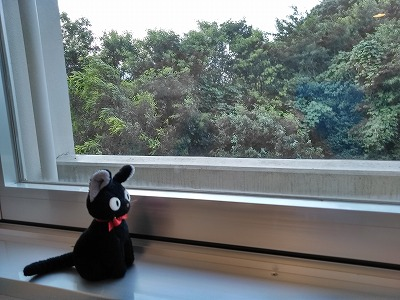f:id:keiko-blog:20180705133046j:plain