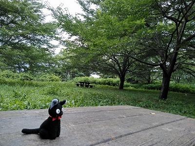 f:id:keiko-blog:20180705134504j:plain