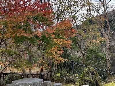 f:id:keiko-blog:20181212151758j:plain