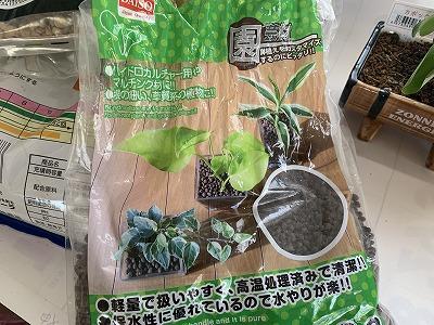 f:id:keiko-blog:20190326091137j:plain