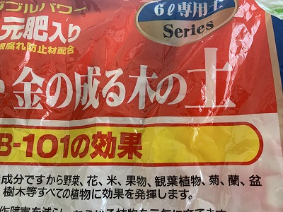 f:id:keiko-blog:20190326091141j:plain