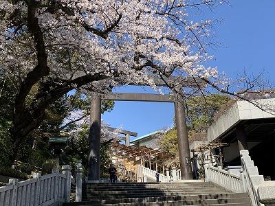 f:id:keiko-blog:20190405084911j:plain