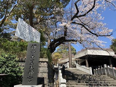 f:id:keiko-blog:20190405092528j:plain