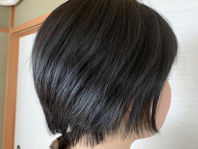 f:id:keiko-blog:20190611212820j:plain