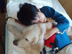 f:id:keiko-yugi-01:20161117100933p:plain