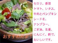 タイの牛肉サラダ