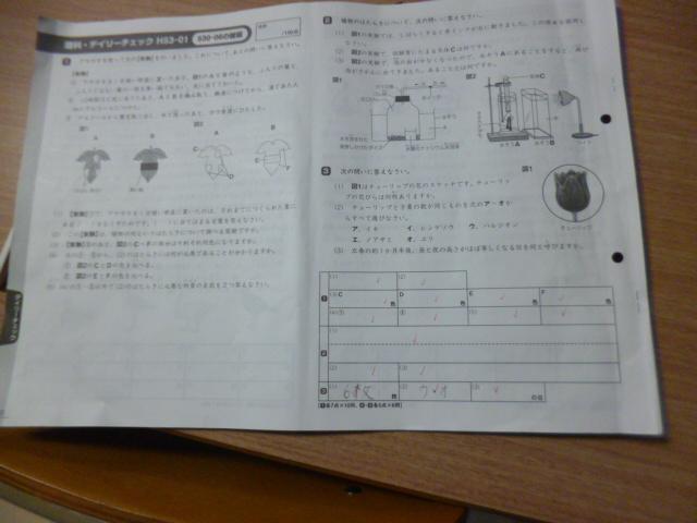 f:id:keima-no-takatobi:20190402214947j:plain