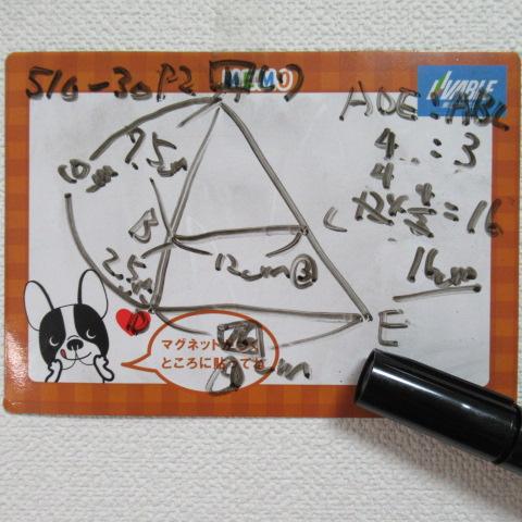 f:id:keima-no-takatobi:20191210171334j:plain