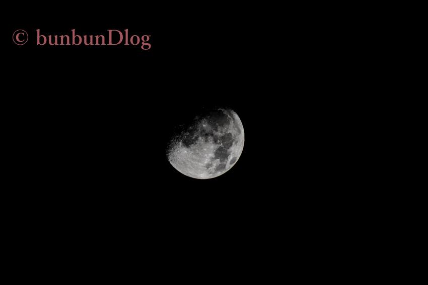 200-500mmで月を撮影