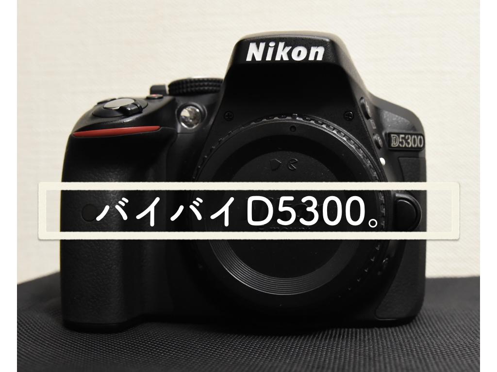 バイバイD5300