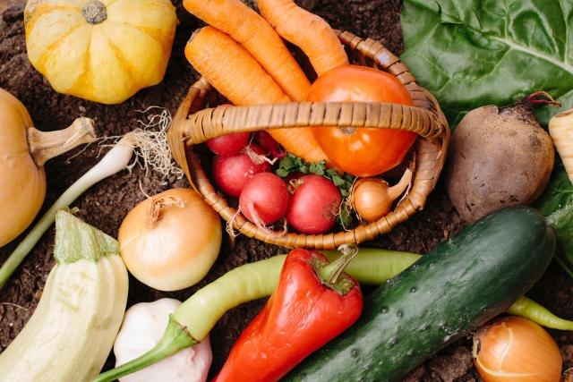 肌断食紫外線対策食べ物