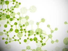 生コラーゲン高分子低分子