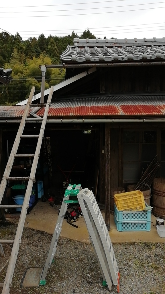 f:id:keisfarm:20181118205745j:plain