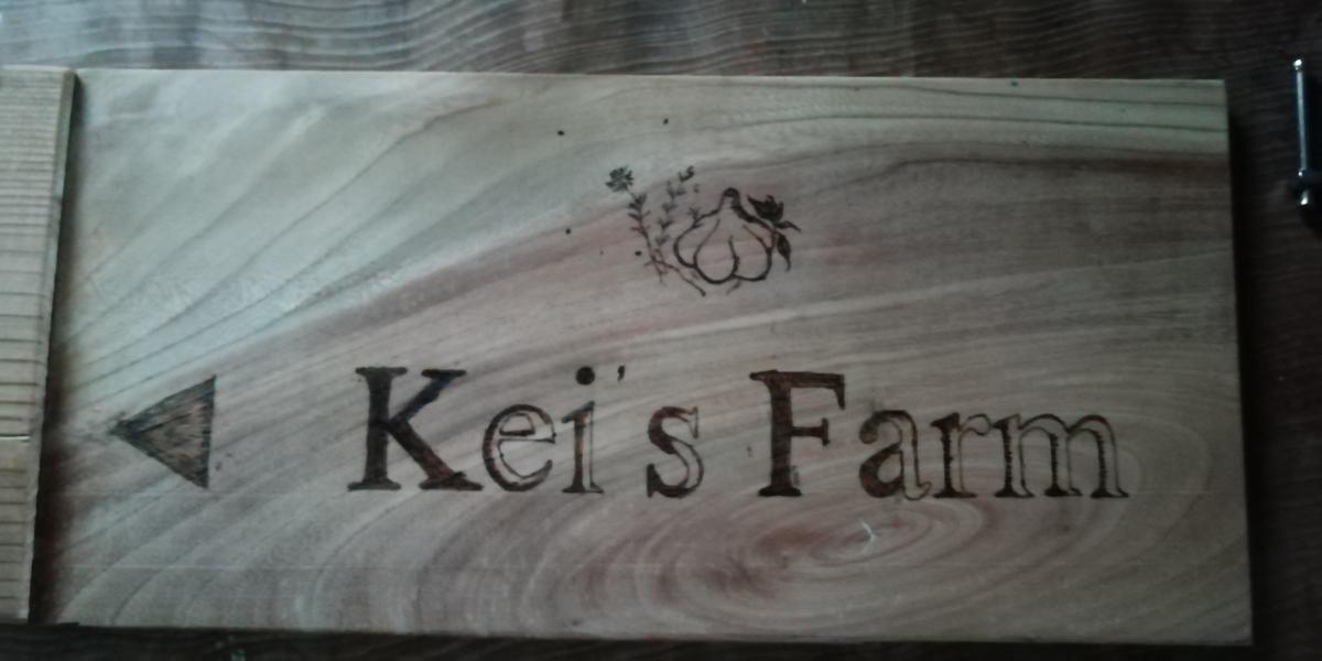 f:id:keisfarm:20190615175541j:plain