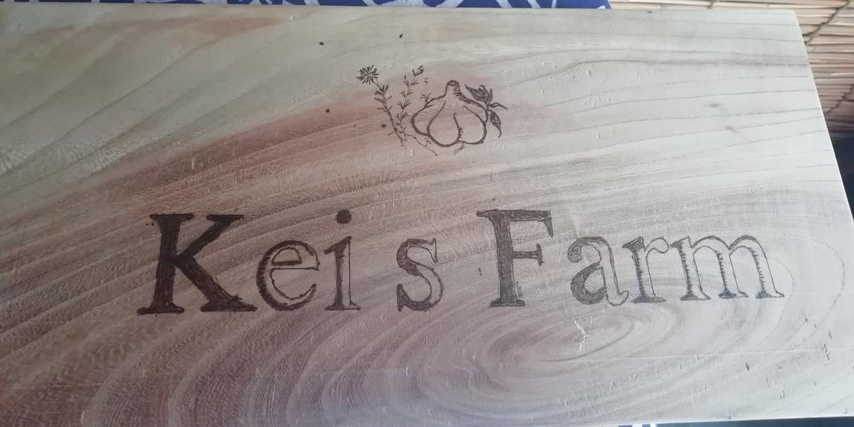 f:id:keisfarm:20190615175546j:plain