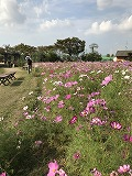 f:id:keishinkai:20161018161444j:plain