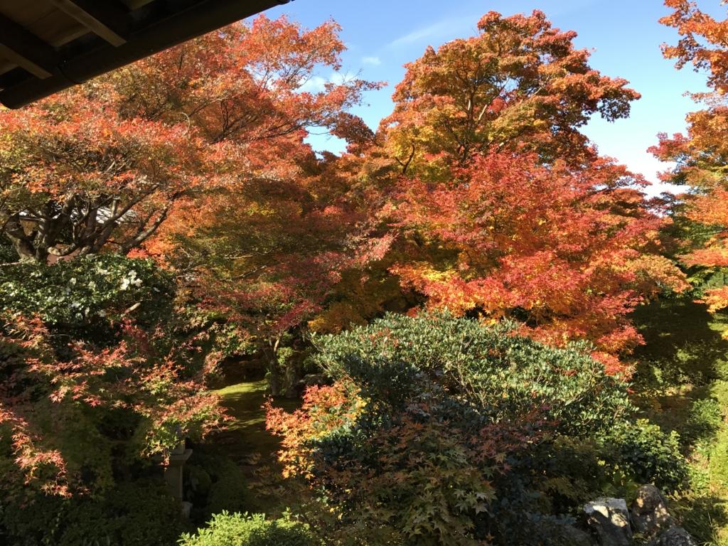 f:id:keishinkai:20161116124557j:plain