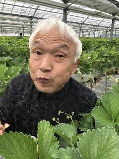 f:id:keishinkai:20170603143242j:plain