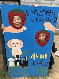 f:id:keishinkai:20170603143938j:plain