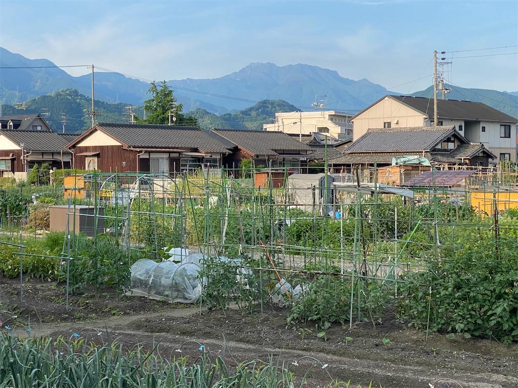 f:id:keishiro-shiraishi:20200522110113j:image