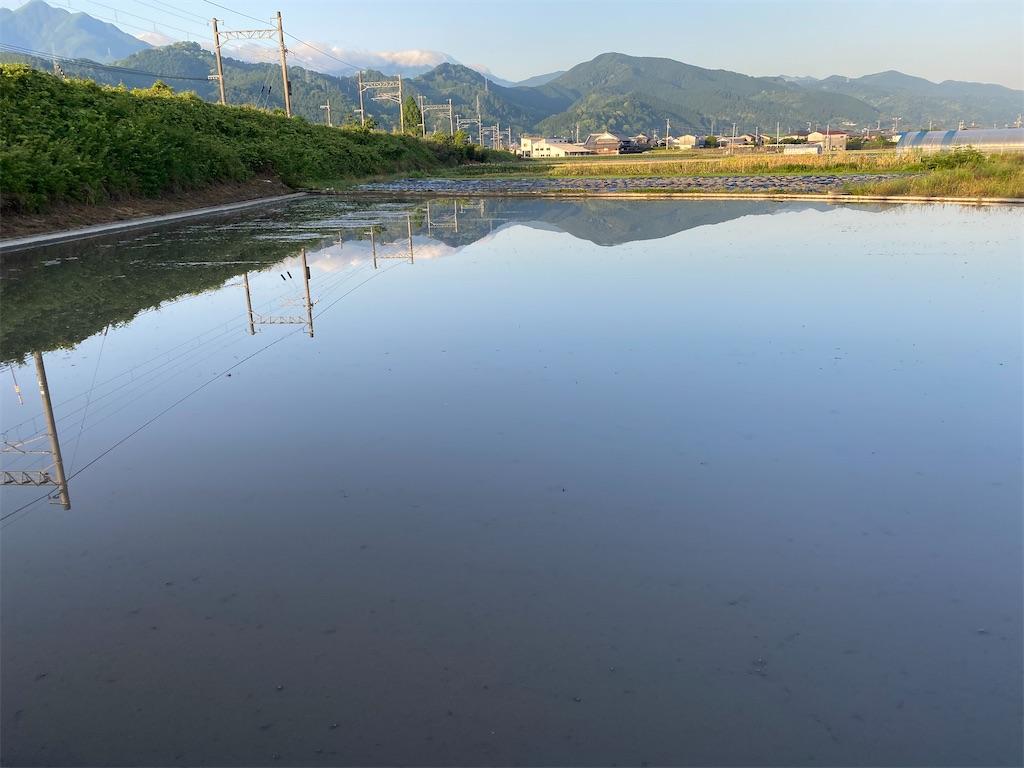 f:id:keishiro-shiraishi:20200525094757j:image