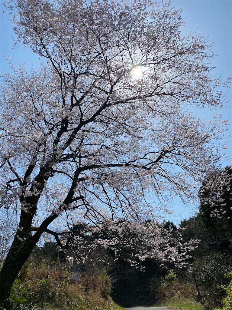 f:id:keishiro-shiraishi:20210326115806j:image