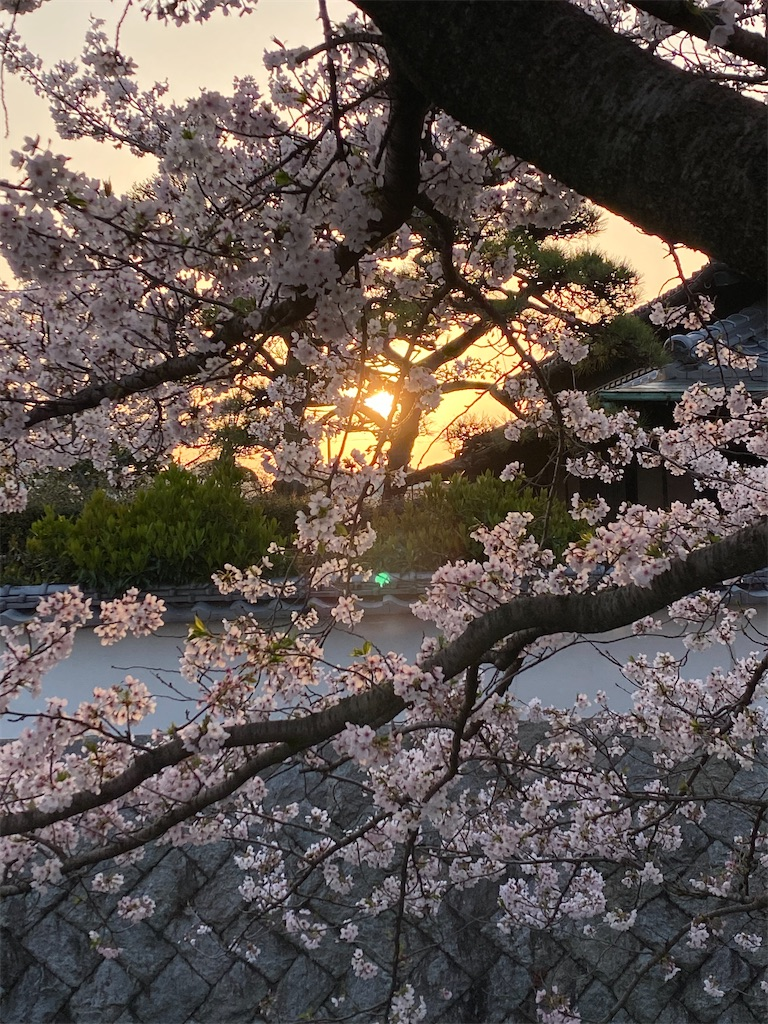 f:id:keishiro-shiraishi:20210331105136j:image