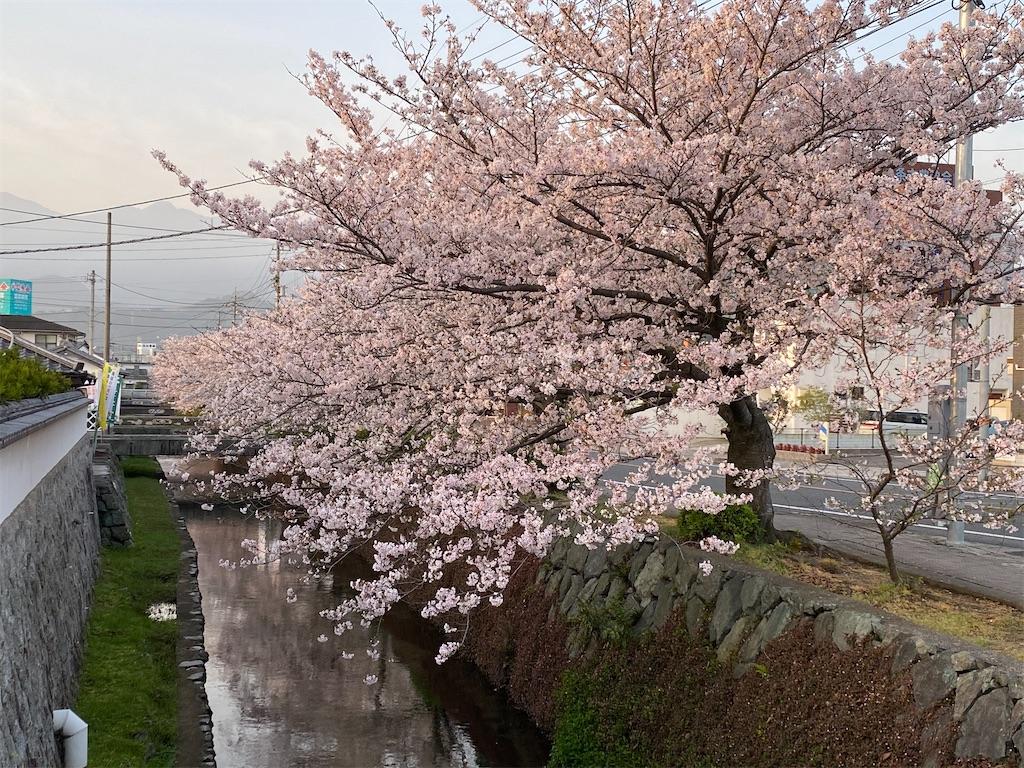 f:id:keishiro-shiraishi:20210331105300j:image