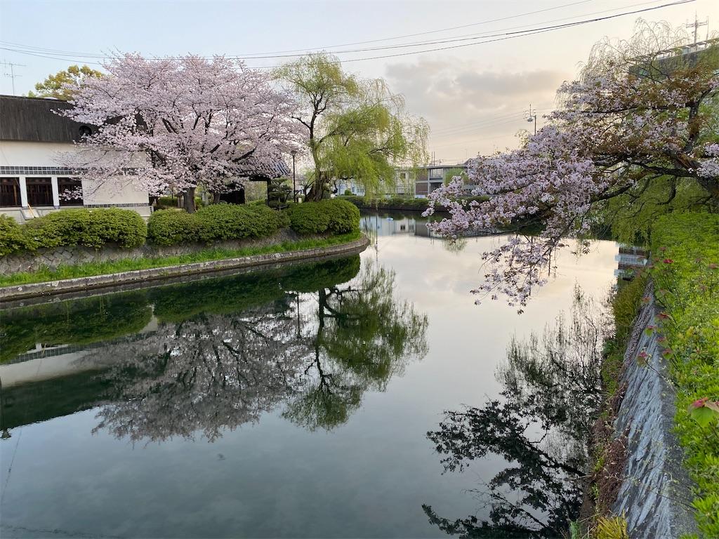 f:id:keishiro-shiraishi:20210331105324j:image