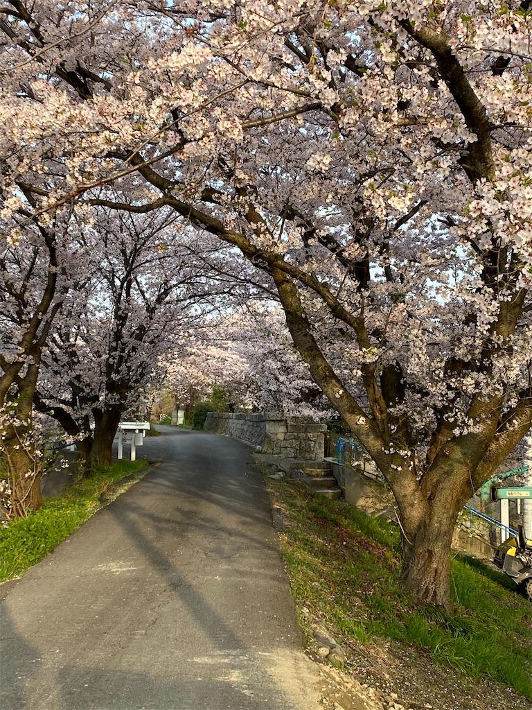 f:id:keishiro-shiraishi:20210331105343j:image