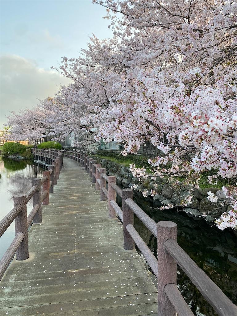 f:id:keishiro-shiraishi:20210331105431j:image