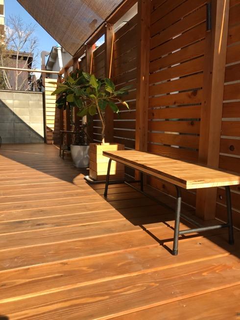 ベンチ椅子と植物