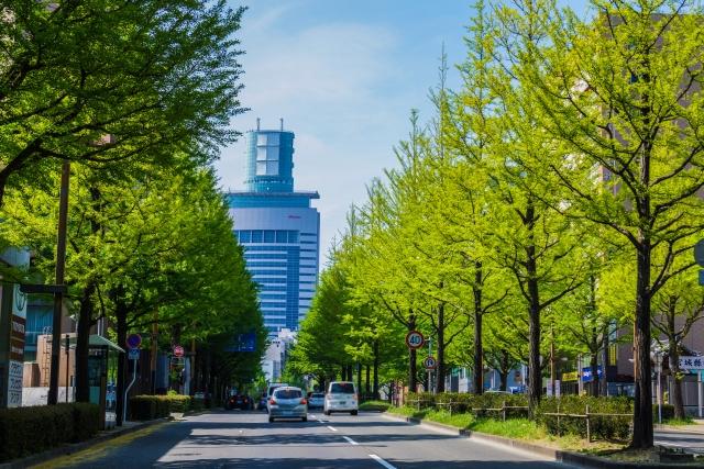 f:id:keisukemurayama:20200620102620j:plain