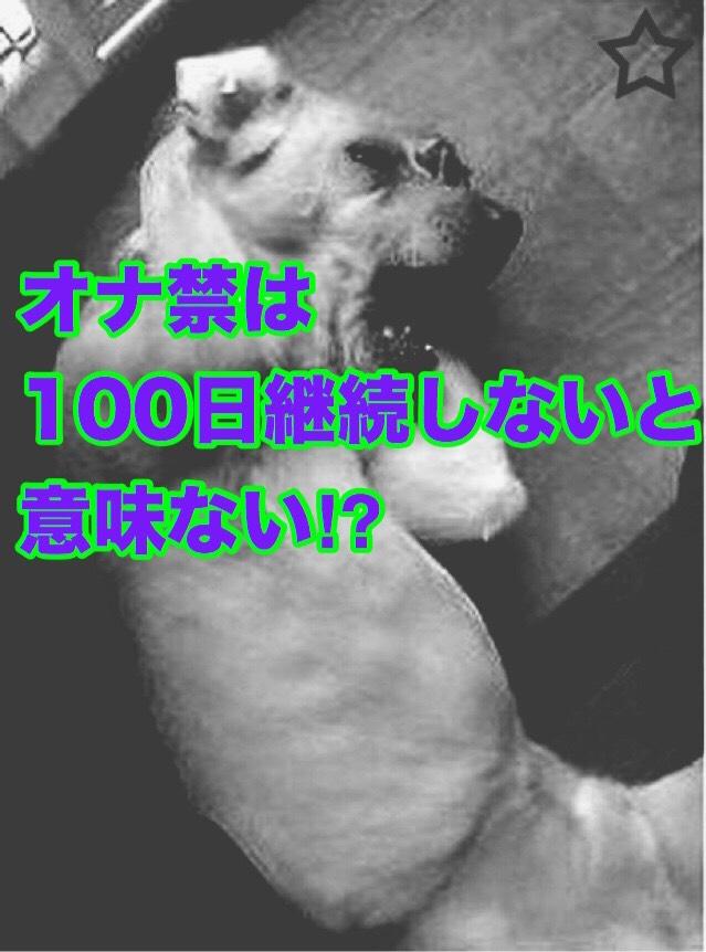 犬 ガーン