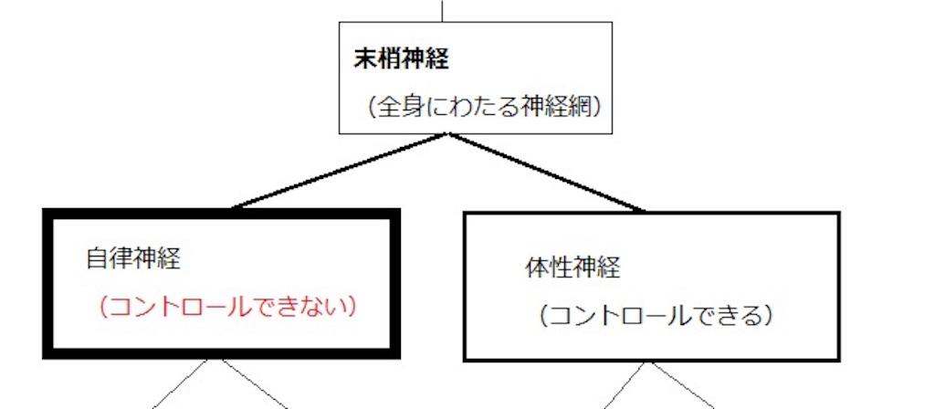 f:id:keitaf31:20170222174210j:image
