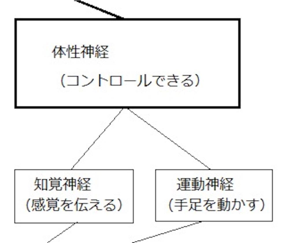 f:id:keitaf31:20170222174319j:image