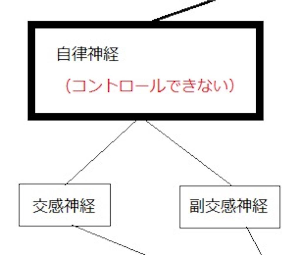 f:id:keitaf31:20170222174423j:image