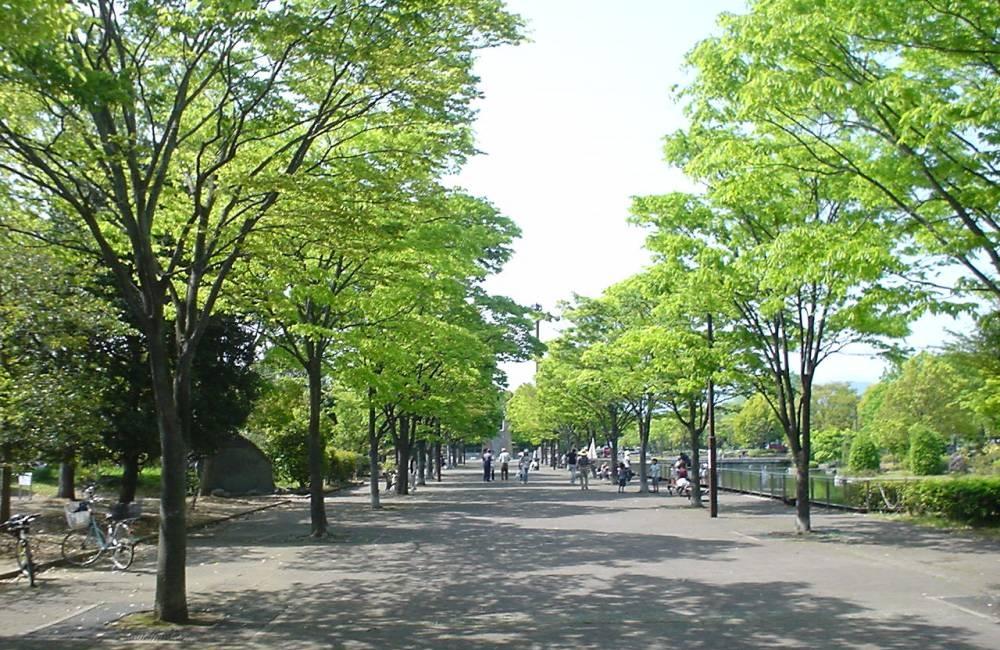 f:id:keiyamamoto413:20180804131010j:plain
