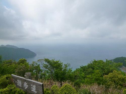 f:id:keiyousan:20140521143654j:image:w360