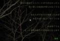 木と満月(財産)