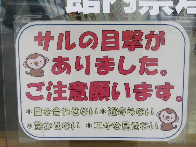f:id:keizanago:20190926205746j:plain