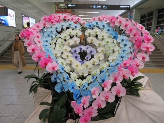 f:id:keizanago:20191121201831j:plain