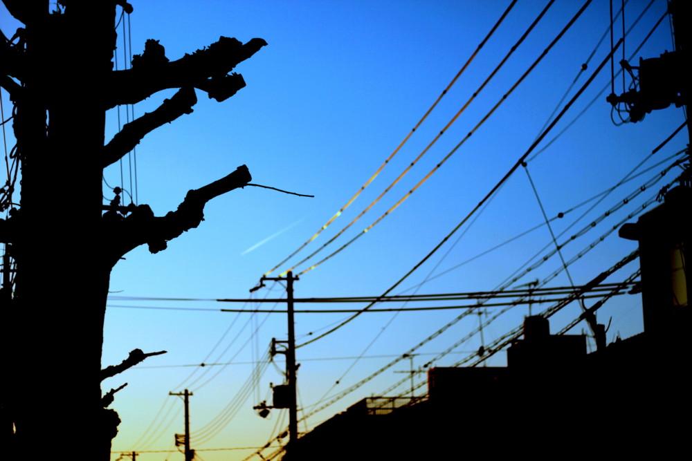 f:id:kejinan:20100221172149j:image:w600