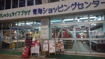f:id:kekoniigata:20210404222532j:plain