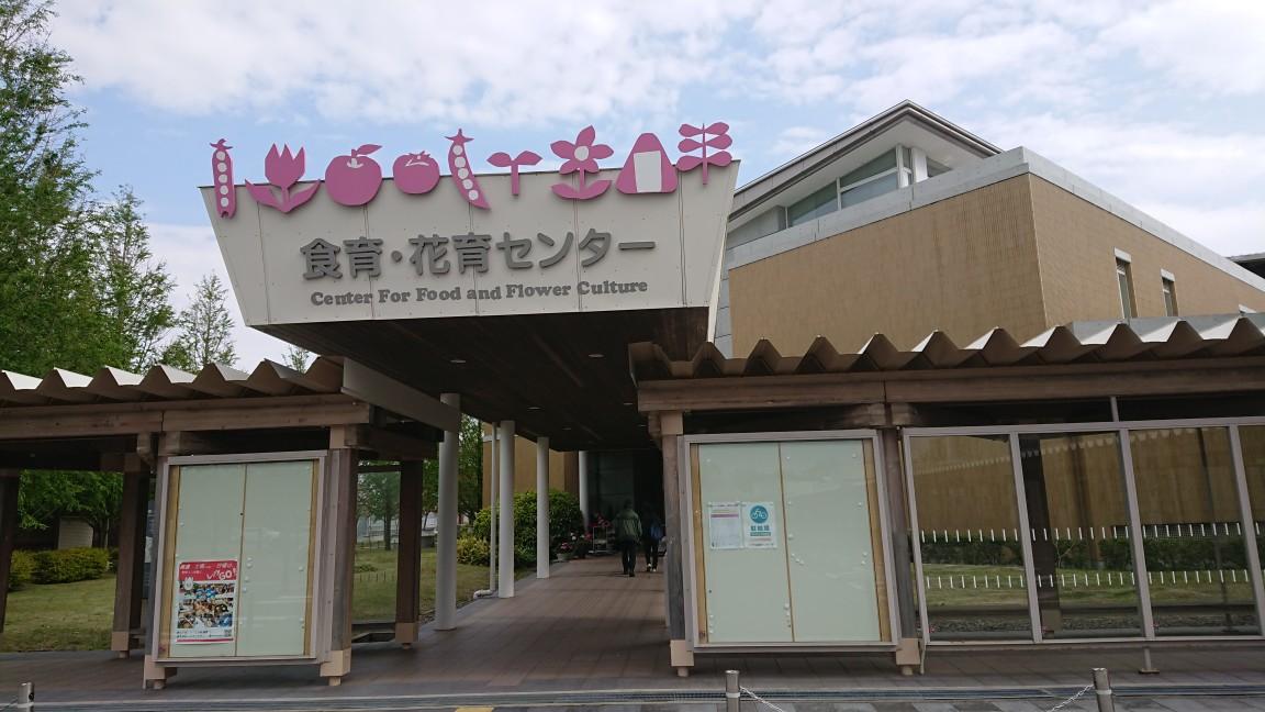 f:id:kekoniigata:20210503145851j:plain