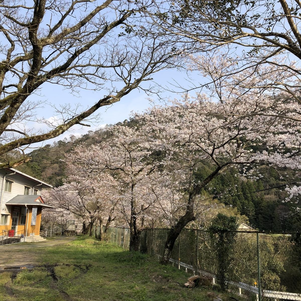 f:id:kemonomichiyoushii:20190401135821j:plain