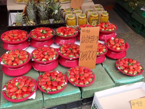 韓国のイチゴ