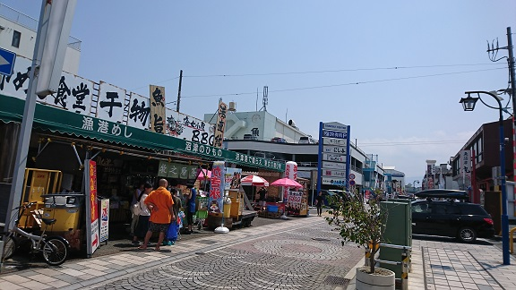 沼津港周辺